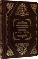 """Книга """"История одного города"""" М.Салтыков-Щедрин"""